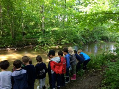 Observation de la biodiversité