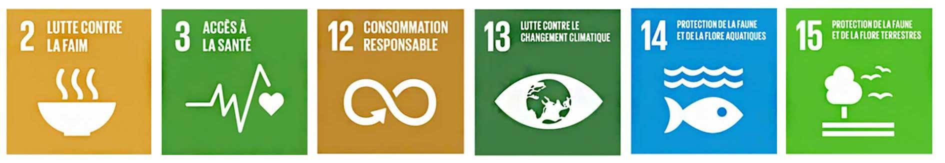 Objectifs de développement durable 2030 liés au thème alimentation durable