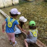 Exemple de projet - L'Isles aux Enfants